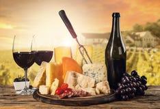 各种各样的种类乳酪用酒 免版税库存图片