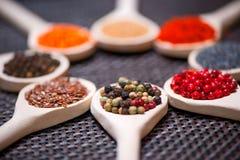各种各样的种类在木匙子-黑胡椒细节的香料  免版税库存照片