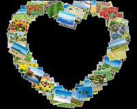 各种各样的自然照片在心脏框架安排了 库存照片
