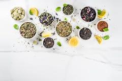 各种各样的茶的分类 免版税库存图片