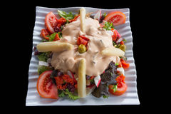 各种各样的菜沙拉由被隔绝的橄榄冠上了 图库摄影
