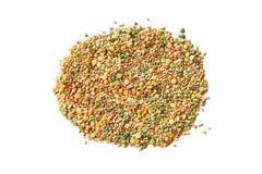 各种各样的谷物大麦米,燕麦,黑麦,豌豆,在白色背景隔绝的扁豆堆 免版税图库摄影