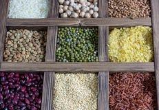 各种各样的谷物扁豆,豌豆,米,奎奴亚藜,荞麦 免版税库存图片