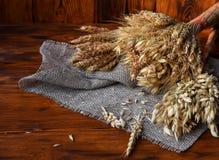 各种各样的谷物麦子、燕麦,黑麦和其他的耳朵在木的 库存图片