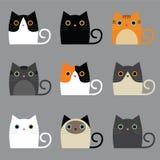 各种各样的逗人喜爱的猫 免版税库存图片