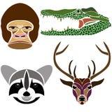 各种各样的野生动物画象:大猩猩,鳄鱼,浣熊a 免版税库存照片