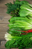 各种各样的阔叶蔬菜 库存照片