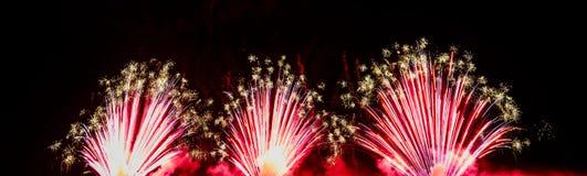 各种各样的颜色五颜六色的烟花在夜空的 免版税库存照片