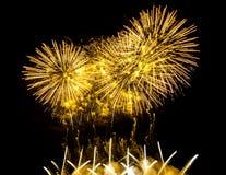 各种各样的颜色五颜六色的烟花在夜空的 免版税图库摄影