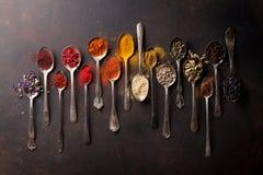 各种各样的香料匙子 免版税库存图片