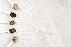 各种各样的香料和草本在木匙子在白色桌背景 黑白胡椒,丁香,美味,茴香籽 免版税库存照片