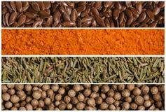 各种各样的香料种子拼贴画  胡麻和面包渣、迷迭香和香菜 大下落绿色叶子宏观摄影水 库存图片