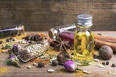 各种各样的香料种子 图库摄影