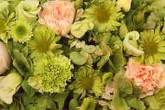 各种各样的鲜花的花的布置 免版税库存图片