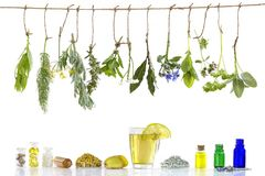 各种各样的ingrdients 药用植物为在老phytotherapyand healthbeauty替代医学促进做准备 免版税库存照片