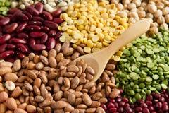 各种各样豆类 免版税库存照片