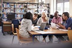 合作在项目的小组成熟大学生 免版税库存图片