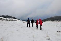 合作步行在冬时的山的小组 免版税库存图片