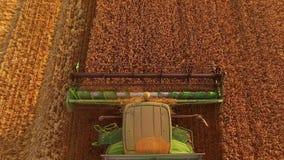 组合切口麦子 股票视频