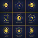 组合图案设计元素,优美的模板 书法典雅的线艺术商标设计 在象征B, A, E, T, R, L, H, W, M fo上写字 向量例证