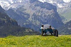 结合坐长凳观察瑞士阿尔卑斯和草甸惊人的看法在Oeschinensee (Oeschinen湖)附近,在Bernese Oberland, 库存图片