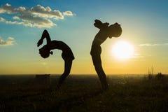 结合实践的瑜伽在公园在日落下落后面 免版税库存图片
