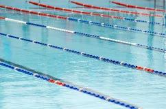 合并游泳 免版税库存图片