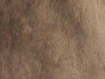 综合性皮革背景 免版税库存图片