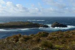 合恩角,火地群岛,巴塔哥尼亚,南美 免版税图库摄影