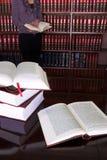 合法24本的书 免版税库存照片
