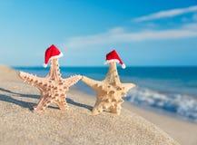 结合走在海滩的海星在圣诞老人帽子。假日概念 免版税库存照片