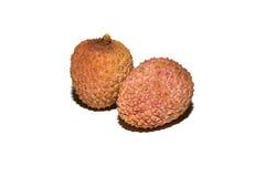 结合lychee在白色背景的果树 免版税库存图片