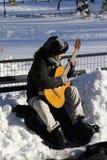 吉他弹奏者在中央公园 库存图片