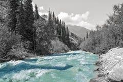 吉尔吉斯斯坦自然,格里峡谷 免版税库存照片