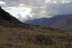 吉尔吉斯斯坦-中央天山地区 免版税库存照片