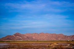吉拉山在亚利桑那西南部的尤马 库存照片