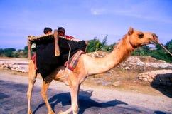 吉普赛人在Jaisalmer,印度 库存照片