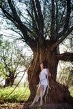 吉普赛妇女在森林里 库存图片