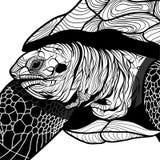 吉祥人或象征设计的,商标T恤杉的传染媒介例证乌龟动物顶头标志。 免版税库存照片