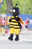 吉祥人,一个黄蜂,在马拉松长跑开始前 库存图片