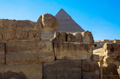 吉萨棉伟大的狮身人面象有吉萨棉,开罗,埃及伟大的金字塔的  图库摄影