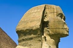 吉萨棉伟大的狮身人面象  免版税图库摄影