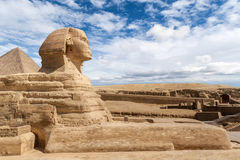 吉萨棉伟大的狮身人面象  库存图片