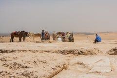 吉萨棉古老废墟  免版税库存图片