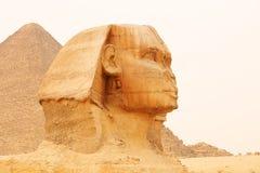 吉萨棉和金字塔伟大的狮身人面象  埃及 免版税库存照片