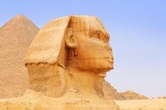 吉萨棉和金字塔伟大的狮身人面象  开罗 库存照片