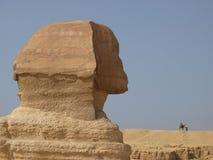 吉萨棉极大的狮身人面象 图库摄影
