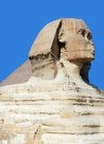 吉萨棉极大的狮身人面象 免版税图库摄影