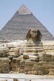 吉萨棉狮身人面象和金字塔在埃及 免版税库存照片