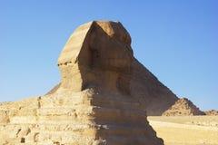 吉萨棉狮身人面象在开罗埃及 免版税库存图片